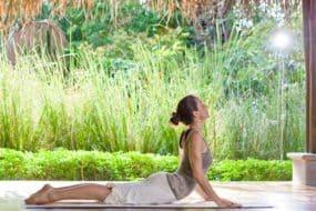 yoga begin yogapad