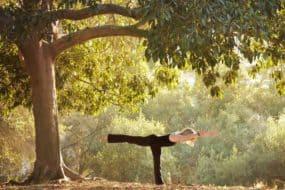 yoga verder op yogapad
