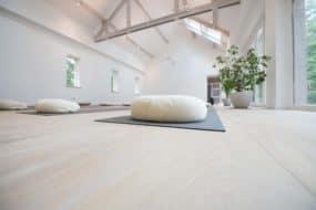 Purusha yoga - Zaal